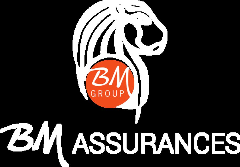 BM Assurances recruteCHARGÉ DE CLIENTÈLE SEDENTAIRE (H/F) 0